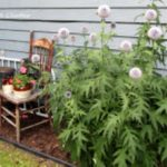 Awesome outdoor junk garden to reuse your old stuff 28