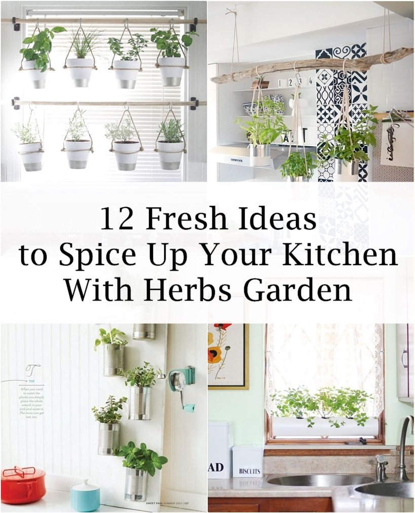 12 Fresh Ideas To Spice Up Your Kitchen With Herbs Garden   Matchness.com