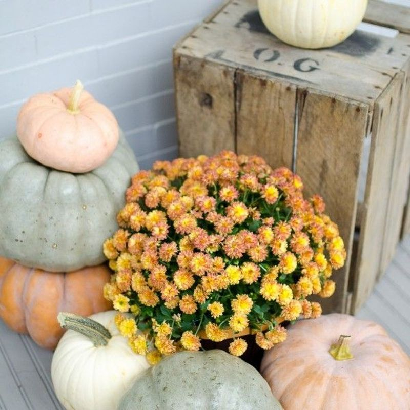 Cozy porch decoration ideas to match any home styles this fall 34