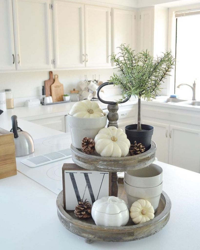 White pumpkin and house plant used centerpiece decoration
